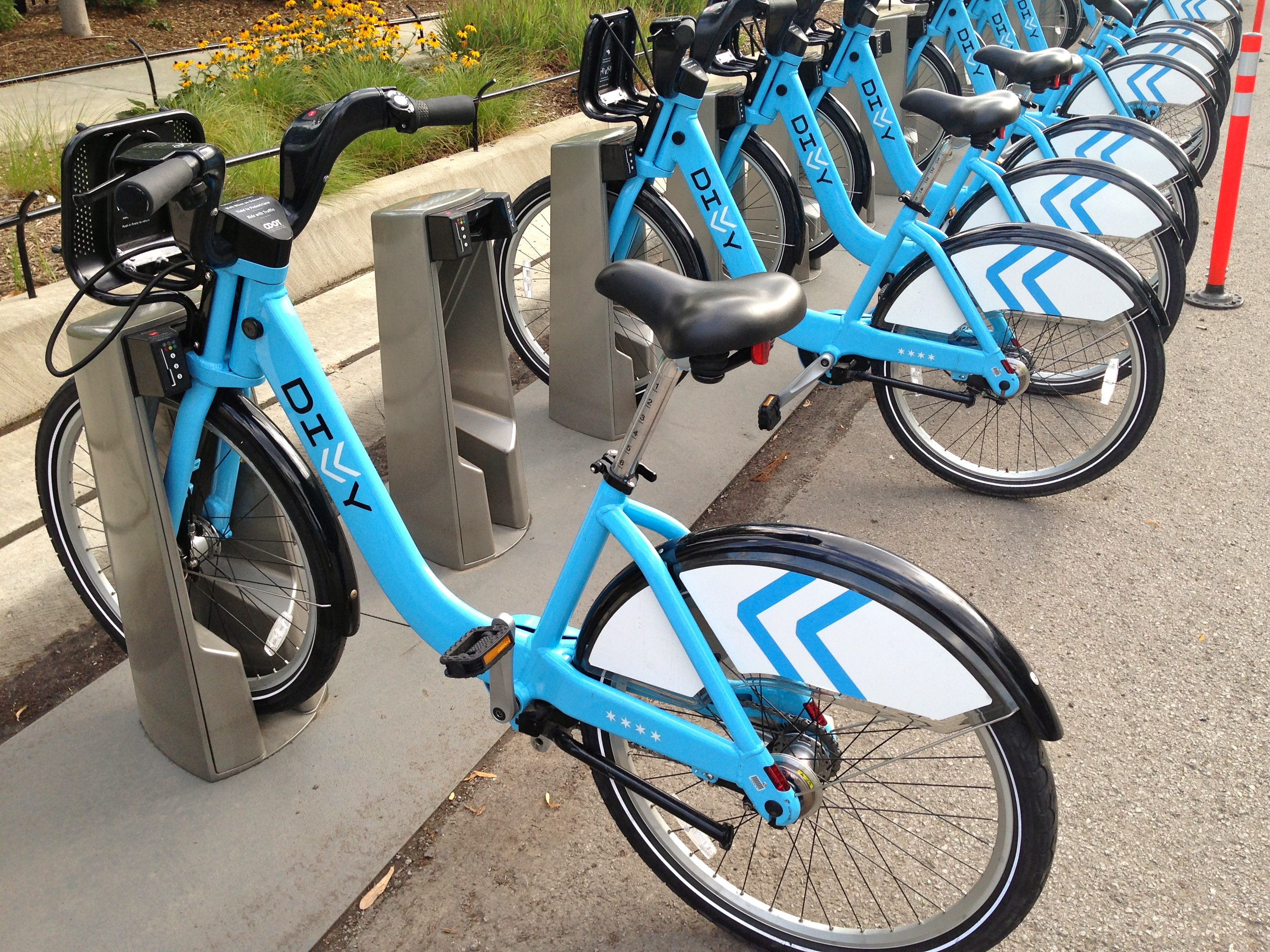 Getting Around on a Divvy Bike | Petchmo